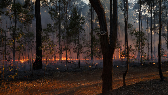 Extreme fire danger for parts of Queensland as temperatures soar