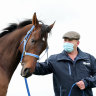 Incentivise will have to be a horse out of history to win Melbourne Cup