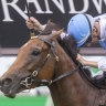 Rawiller a driving force in the saddle when the whips aren't cracking