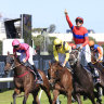 Horse of the year farce as Racing Australia recall ballots