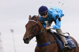 Andrew Adkins riding at the Canterbury trials on Tuesday.
