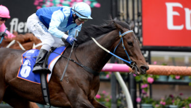 Lovani is the horse at the centre of a massive probe.
