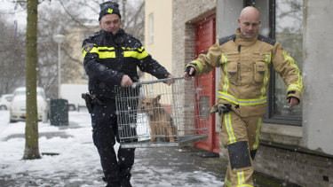 Sergeant Erik Smit, left, and a firefighter rescue a dog that had been left alone on a balcony during a snowfall.