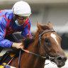 Verry Elleegant-Addeybb clash appeals but Slipper champions well ahead of current crop