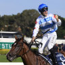 Freedman tears flow as Stay Inside charges away with Golden Slipper