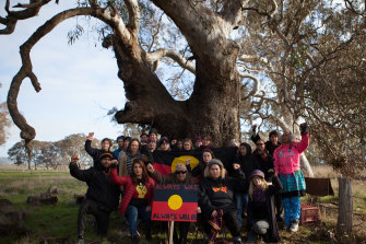Activists plan to blockade this tree, which is thought to be 800 years old.