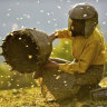 When it comes to beekeeping, your mood matters. Here's why