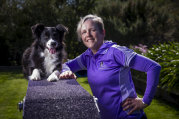 Obstacles are no obstacles: Border collie Rihanna with handler Roslyn Atyeo.