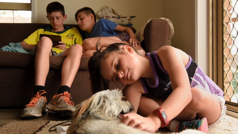 Joel Haywood, 13 (left) and Ryan Haywood, 11 (centre) play a game as their sister Keeley Haywood, 8 (right) plays with the family pet Tigah at home.