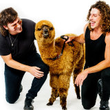 Reuben Styles (L) and Adam Hyde with  Capudo the alpaca.