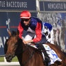 Race-by-race tips and preview for Newcastle on Friday