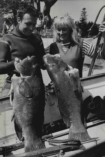 Ron Taylor and Valerie Taylor in 1965. They were both national spearfishing champions.