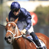 Waller left with two for Slipper and plenty of tomorrows