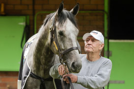 Les Bridge says goodbye to Classique Legend at his stable on Sunday.