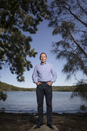 Former prime minister Tony Abbott has held Warringah for more than 25 years.