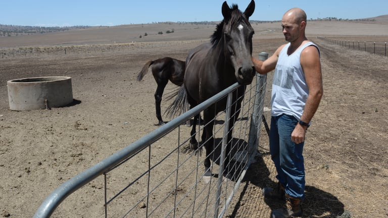 Alex Kean with his horses on his property near Merriwa in the remarkably dry Upper Hunter region of NSW.