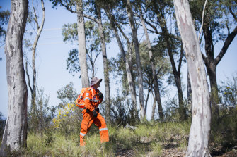 SES and ACT Police searching Bushland on the western side of Caswell Drive in Aranda for missing teen Kathleen Bautista.