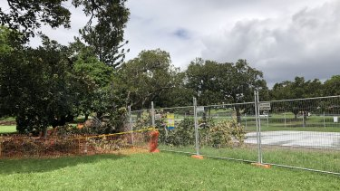 A tree has fallen over at a newly installed basketball court at Musgrave Park, West End.