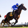 Golden Rose to stay at Rosehill as COVID protocols tighten