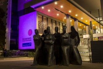 The Royal Women's Hospital entrance will be lit up in purple  to honour Domestic Violence Remembrance Day on Wednesday,