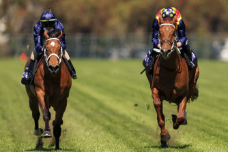 Nature Strip (right) and Home Affairs compete in the  jump-out at Rosehill.