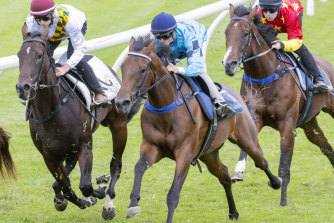 Back in the saddle ... Andrew Adkins on Tuesday ahead of his race return after an horrific fall.