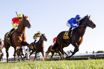 Golden Rose favourite Anamoe (blue silks) gets past In The Congo to win the Run To The Rose.