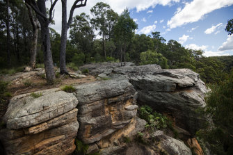 Yellow Rock Lookout where NSW MP Michael Johnsen has been accused of raping a sex worker.