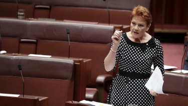 Pauline Hanson in the Senate. The political groups that have most successfully navigated these dynamics have been the populist fringe or single-issue parties.