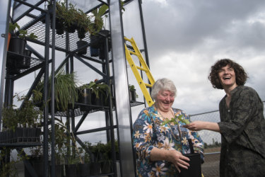 Story for a seedling: The Plant Library and a thriving Sydney community