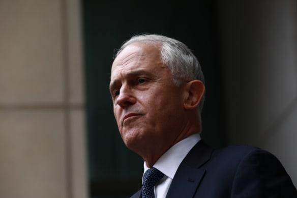 'It makes no sense': Joyce lashes call to have Turnbull represent Australia