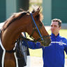 Melbourne Cup winner resumes in Dubai and plans hinge on result