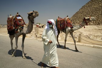A guide wears a surgical mask while leading his camel at the Giza Pyramids on Wednesday.