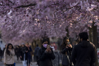 People take pictures under spring blossoms in Berlin, Germany, as the country's coronavirus pandemic enters a third wave. The pace of vaccinations has begun accelerating and some lockdown measures have been cautiously eased.