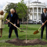 Trump and Macron planted a friendship tree. Now it's dead