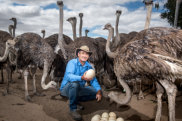 Michael Hastings at his ostrich farm.