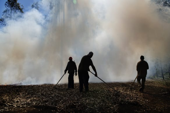 On 30 degree day, boys light a fire in tinder-dry bush