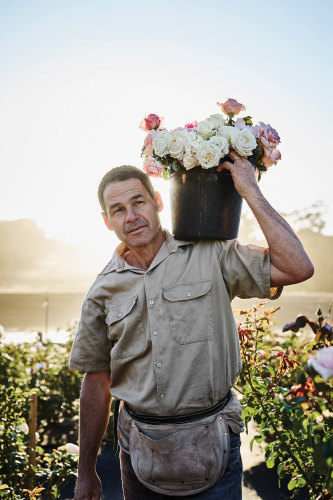 Ashley Wren with some of the peonies and roses grown on Crofters Fold Estate, near Kyneton in Victoria.