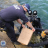 'Calculated act of terror:' Police divers find clues in 40-year-old assassination mystery