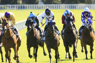 Nine races are scheduled at Wellington on Monday.