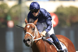 Home Affairs has booked his Golden Slipper by winning the last month's Silver Slipper.