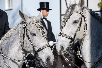 Decorated horses before the annual Sorbian Easter rider processions in Wittichenau, Germany. Sorbians are a Slavic minority in eastern Germany with a rich cultural and linguistic tradition.  This year's processions are more limited in scope than usual and with virtually no spectators due to the pandemic.