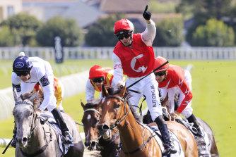 Jockey Brenton Avdulla salutes after an upset Randwick Guineas victory with Lion's Roar.