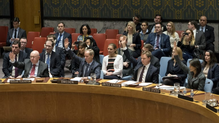 Members of the Security Council vote on the cease-fire resolution.