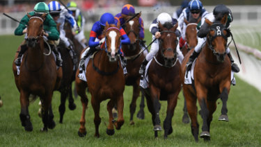 Racing Victoria is worried about the impact a new digital betting tax could have on its revenue.