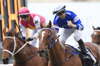Jason Collett punches the air after winning last year's Yes Yes Yes Stakes on Gytrash.