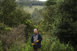 Gerard 'Buck' Buchanan claims to be the first person to grow yuzu commercially in Australia.