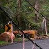 Wild weather reignites calls for underground power lines