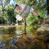 'Logging the lifeboats': Locals raise alarm over Snobs Creek