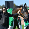 'Definitely riding with me out there': Gudinski's horse wins Australian Cup